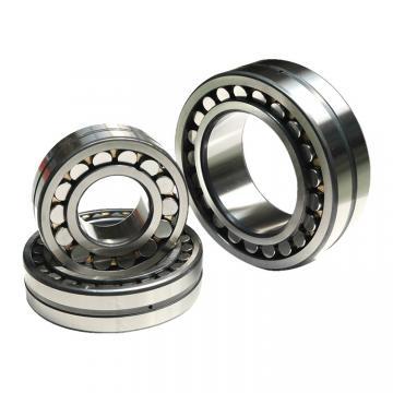 BUNTING BEARINGS FF051202 Bearings